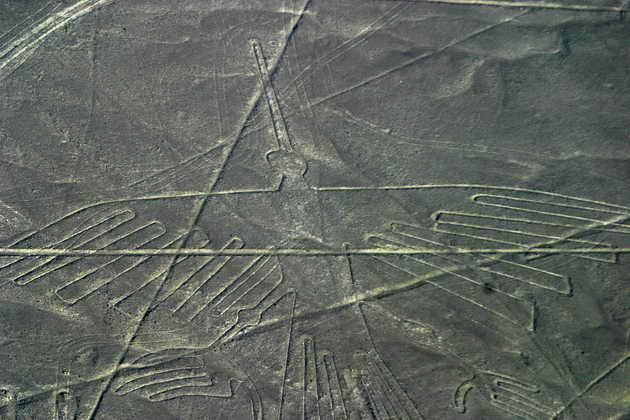 Lines (1)