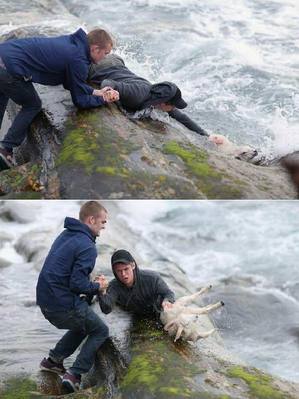 این دو جوان نروژی، برای نجات برهای، خود را به دل امواج خروشان دریا زدهاند