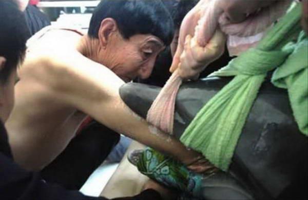 بلند قدترین مرد جهان، زمانی جان دو دلفین را نجات داد: او دستان کشیدۀ خود را وارد معدۀ این دلفینها کرد و تکههای پلاستیکی را که در معدۀ آنها انباشته شده بود، بیرون کشید.