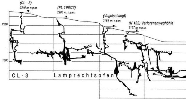 Lamprecht (7)_resize