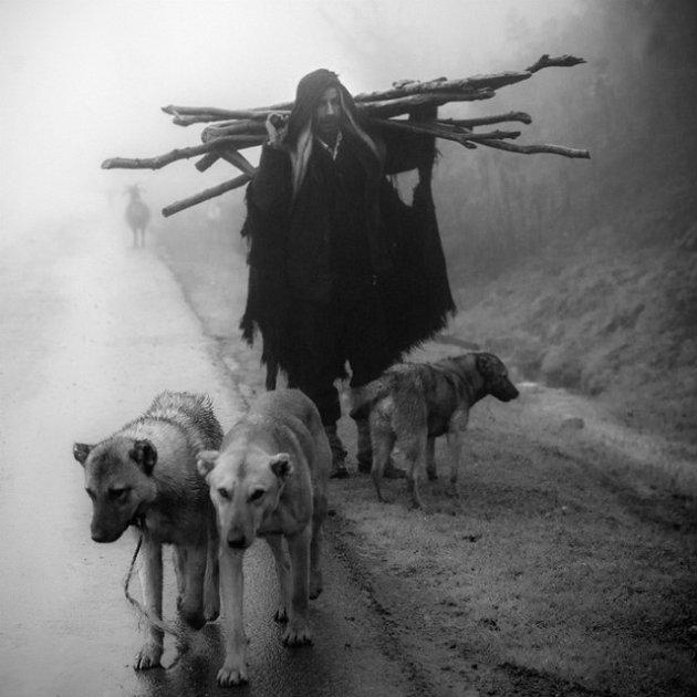 Hemad Nazari - Shepherder_resize